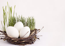 Easter eggs . Easter eggs in a basket Royalty Free Stock Images