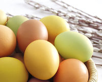 Easter eggs in a basket Royalty Free Stock Images