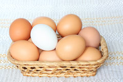 Easter eggs in basket. Easter eggs in basket against the background of the tablecloth Stock Photography