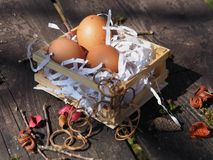 Easter eggs in the basket on the bench. royalty free stock image