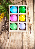 Easter eggs in basket and branch mimosa Royalty Free Stock Photos