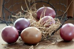 Easter Eggs, Basket, Color, Colored Royalty Free Stock Photo