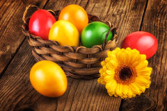 Easter eggs basket on dark wooden background, sunlight effect Stock Photos