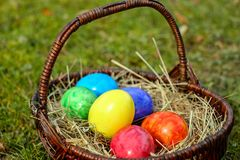 Easter Eggs, Basket, Egg, Color Royalty Free Stock Image