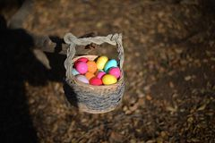 Eggs in the basket royalty free stock photos