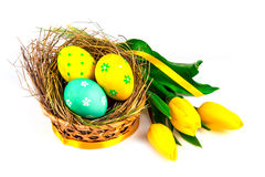 Easter eggs in a basket Stock Photos