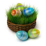 Easter eggs in a basket with a grass Stock Photos