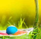 Easter eggs in basket on grass Stock Images