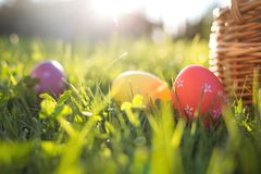 Easter eggs in a basket on the grass on a Sunny spring day royalty free stock photos