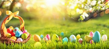 Easter Eggs in a Basket on Green Grass Sunny Background royalty free stock image