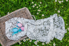 Easter eggs in basket on green grass, top view Stock Photos