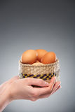 Easter eggs in basket Stock Image