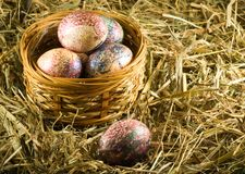 Easter eggs in basket in the hay. Image of easter eggs in basket in the hay Royalty Free Stock Image