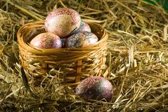 Easter eggs in basket in the hay. Image of easter eggs in basket in the hay Royalty Free Stock Photos