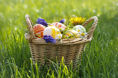Easter eggs in the basket Stock Image