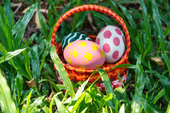 Easter eggs in the basket. Stock Photography