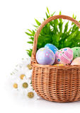 Easter eggs in basket with spring flowers Royalty Free Stock Photos