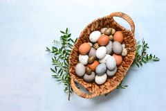 Easter eggs basket, view from above royalty free stock images