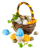 Easter eggs in basket on a white background Stock Photography