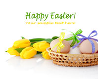 Easter eggs in the basket and yellow tulips isolated on white Royalty Free Stock Photos