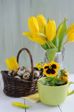 Easter  eggs in the basket and yellow tulips on painted background Royalty Free Stock Photo