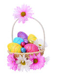 Easter eggs in beautiful basket with chamomile flowers isolated Royalty Free Stock Images
