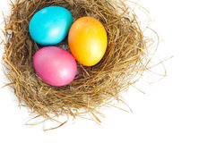 Easter eggs in bird nest Stock Photography