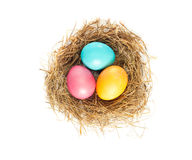 Easter eggs in bird nest. Close up of Easter eggs in bird nest on white background with soft shadow Stock Images