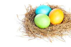Easter eggs in bird nest. Close up of Easter eggs in bird nest on white background with soft shadow Royalty Free Stock Image