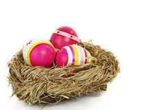 Easter eggs in a bird nest Royalty Free Stock Photography