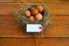 Easter eggs in a bird nest and a greeting card. Stock Image