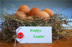 Easter eggs in a bird nest and a greeting card. Stock Images