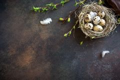 Easter Eggs in Nest. Easter Eggs in bird Nest on rustic metal background. Quail easter eggs with spring green leaves and feathers in nest on brown table with stock photo
