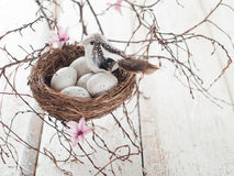 Easter eggs and bird Stock Image