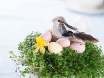 Easter eggs and bird Royalty Free Stock Image