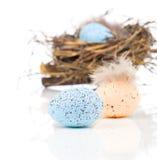 Easter eggs in bird nest Stock Photography