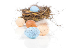 Easter eggs in bird nest Stock Photo