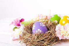 Easter eggs in a bird's nest Stock Photos