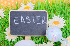 Easter eggs with blackboard on the grass Royalty Free Stock Photos