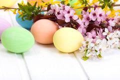 Easter eggs with blooming branch Stock Images