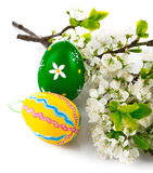 Easter eggs with blooming branch Royalty Free Stock Image