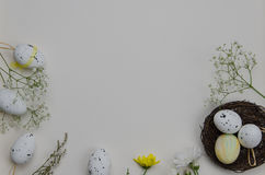 Easter eggs with blooming flowers. On white background. Illustration Stock Images