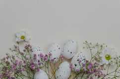 Easter eggs with blooming flowers. On white background. Illustration Stock Photography