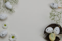 Easter eggs with blooming flowers. On white background. Illustration Royalty Free Stock Image
