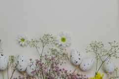 Easter eggs with blooming flowers. On white background. Illustration Royalty Free Stock Images