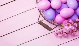 Easter eggs and blooming Peach branches on a pink wooden table.  Top view stock photography