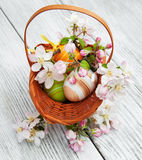 Easter eggs with blossom Stock Photo