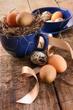 Easter eggs in blue cup with ribbons Stock Images