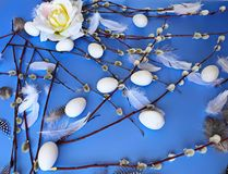 Easter Eggs blue  flowers roses   willow tree  illustration greetings blue background   Theme Holiday design. Happy Easter Eggs and  Willow tree On Blue royalty free stock photos