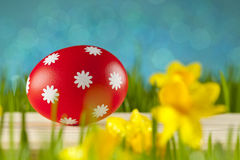 Easter eggs on blue sky background Stock Photography